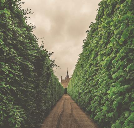 ¿Sabes lo que es Walled Garden?