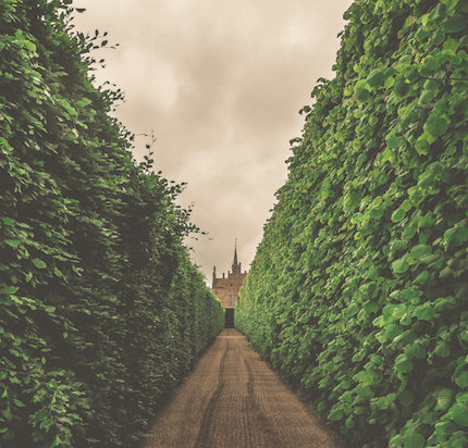Você sabe o que é Walled Garden?