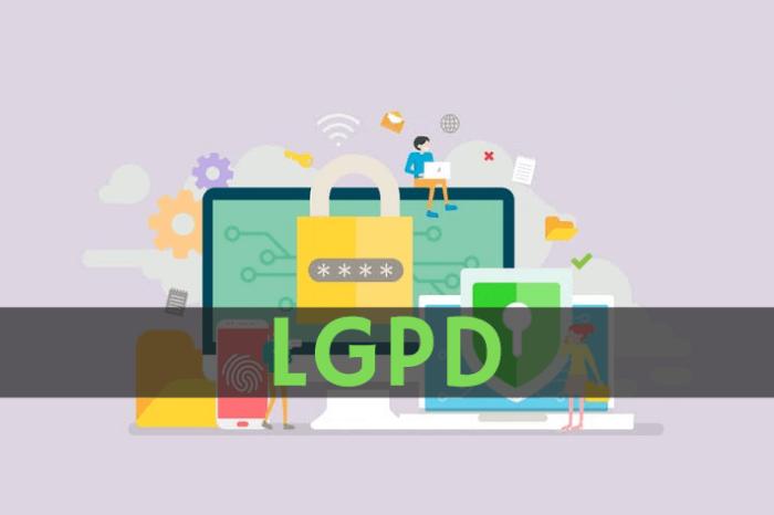 LGPD: o que as empresas de marketing devem fazer para se adaptar